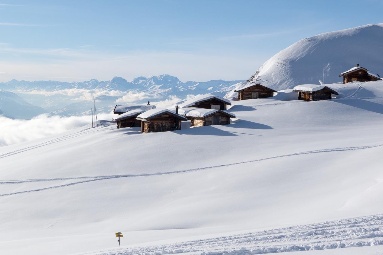 hochwang pagiger bleis winter